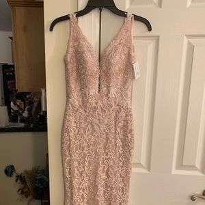 Blush Light Pink Lace Prom/Special Occasion Dress